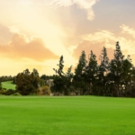 Train your Body & Mind with Chaparral Golf Club