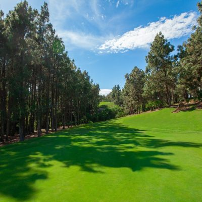Chaparral-Golf-Club-Mijas-Costa-del-Sol-hoyo-10.jpg