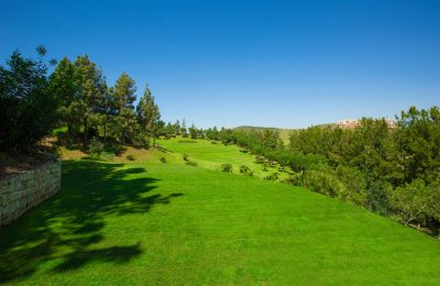 Chaparral-Golf-Club-Mijas-Costa-del-Sol-hoyo-16.jpg
