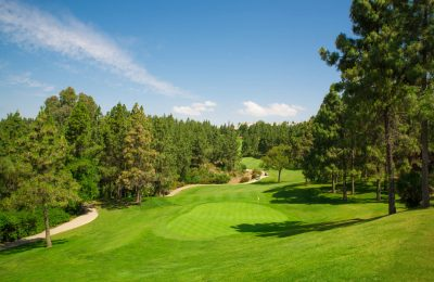Chaparral-Golf-Club-Mijas-Costa-del-Sol-hoyo-8-a.jpg