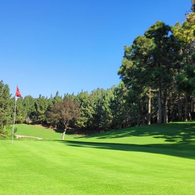 Chaparral-Golf-Club-Mijas-Costa-del-Sol-hoyo-8.jpg