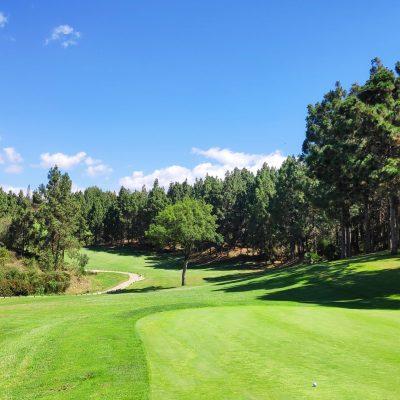 Chaparral Golf Club Mijas Costa del Sol árbol identidad del club