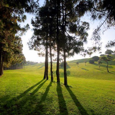 hoyo15-el-chaparral-golf-club-4.jpg